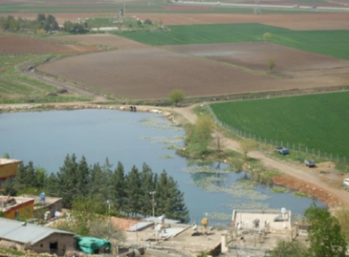 Bağlama Gölü, Kirlilik Tehdidi Altında
