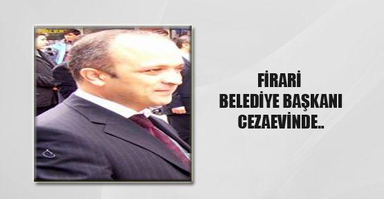 Firari Belediye Başkanı Yakalandı
