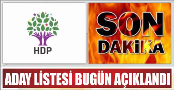 İŞTE HDP'NİN ADAY LİSTESİ