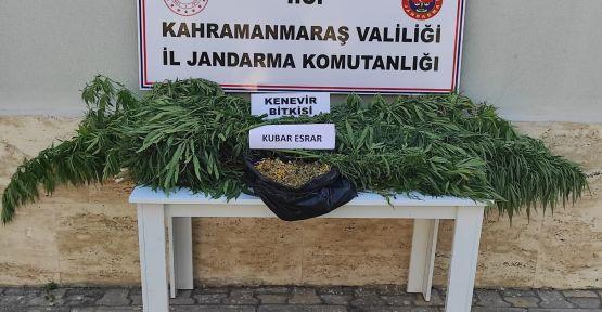 JANDARMA UYUŞTURUCU OPERASYONU GERÇEKLEŞTİRİLDİ