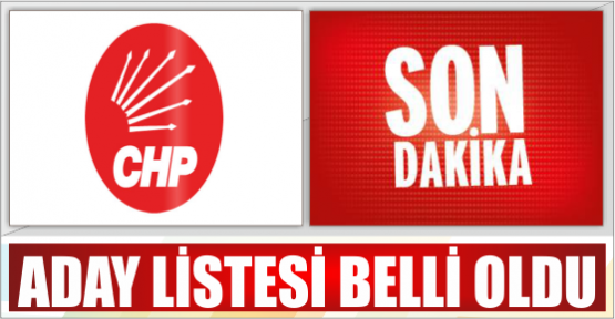 MHP ADAY LİSTESİ BELİRLENDİ