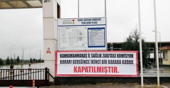 RUHSATLI VE RUHSATSIZ HAYVAN SATIŞ YERLERİ KAPATILDI