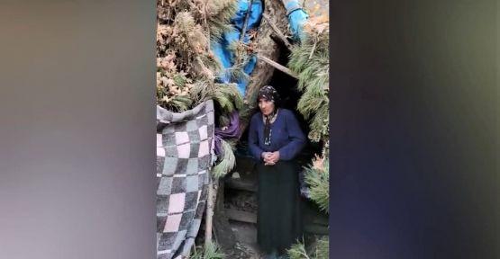 VAHŞİ HAYVANLARDAN  KORUNUYORLAR